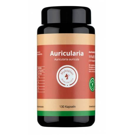 Mykoplan Auricularia Vitalpilz