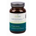 MAQUI berry 500 mg (90 Kaps.) von VITALSEE | Antioxidans, Zellgesundheit, Blutgefäße