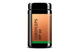 Cordyceps MP90 (90 Kaps) von MYKOPLAN | Burnout, Erschöpfung, Regeneration